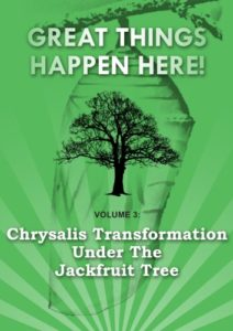 Amazon Kindle - Chrysalis Transformation Under the Jackfruit Tree - Shannon Panzo PhD
