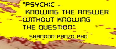 Psychic - Knowing the Answer Without Knowing the Question - Shannon Panzo PhD