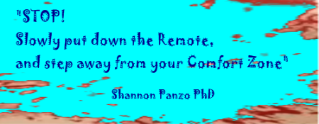STOP - Put Down the Remote, and Step Away from your Comfort Zone - Shannon Panzo PhD