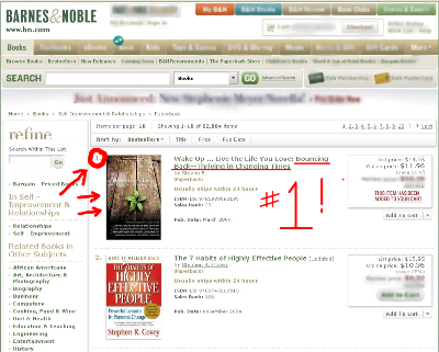 Bouncing Back - Thriving in Changing Times, # 1 Bestseller at Barnes & Noble Bookstore. Co - Author Shannon Panzo